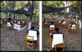 الصين: مدرسة تمتحن طلابها في غابة لتجنب الغش